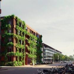 De Linné – Tweede plek in tender gemeente Amsterdam